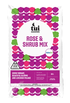 Tui Rose & Shrub Mix
