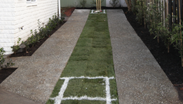 Create a backyard sports field