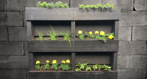 Creating A Pallet Garden