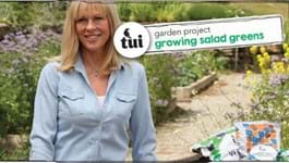 Tui Garden Project - Growing Salad Greens