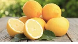 Choosing the perfect citrus variety