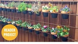 Create a Vertical Garden