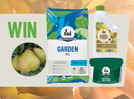 Win a fruit tree planting pack