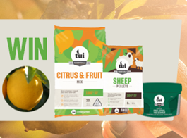 Win a citrus planting pack