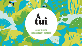Tui Grow Guides - Indoor Plant Success