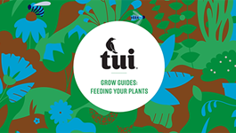 Tui Grow Guides - Feeding your plants